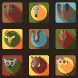 Animal Portrait Set with Flat Design Stock Photography