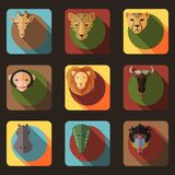 Animal Portrait Set with Flat Design Royalty Free Stock Photo