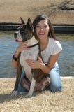 Animal Portraits Royalty Free Stock Photos