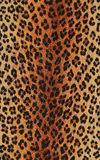 Animal print. Decorative brown and black animal print wallpaper Stock Photography