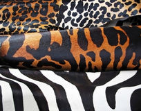 Animal Print. Beutiful animal print textures. Leopard, zebra, tiger royalty free stock image