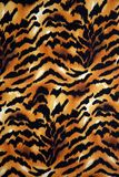 Animal Print Background Stock Photos
