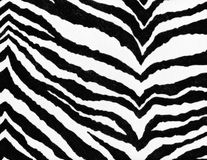 Animal print background Royalty Free Stock Photo