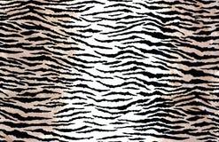 Animal Print Background Stock Photos