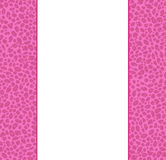 Animal Print Border Stock Photos