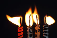 Animal print candles with the flame being blown Royalty Free Stock Image