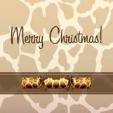 Animal Print Christmas Cracker Card Royalty Free Stock Image