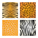 Animal print design. Royalty Free Stock Photography