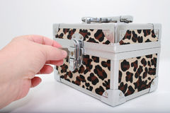 Animal Print Lock Box Royalty Free Stock Image
