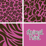 Animal print Stock Image