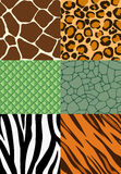 Animal print seamless patterns vector illustration