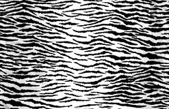Animal Print Texture Royalty Free Stock Image