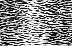 Animal Print Texture Royalty Free Stock Image