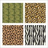 Animal prints. Four different animal prints (alligator, cheetah, jaguar, zebra vector illustration