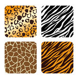 Animal prints design. Royalty Free Stock Images