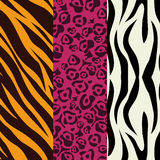 Animal prints design. Animal prints design, vector illustration eps 10 Stock Image
