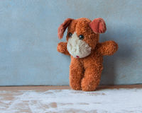 Animal protection. Alone red puppy Royalty Free Stock Images