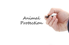 Animal protection text concept Royalty Free Stock Photo