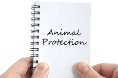 Animal protection text concept Stock Photo