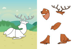 Animal puzzle Stock Photos