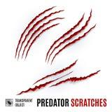 Predator Scratches Royalty Free Stock Photos