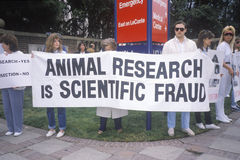 Animal rights demonstrators holding signs Stock Photography