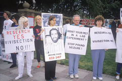 Animal rights demonstrators holding signs, Los Angeles, California Royalty Free Stock Photos