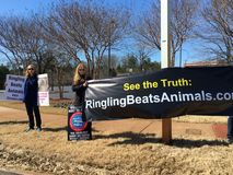 Animal rights protest against circus. Animal rights protesters holding signs to against Ringling circus beats elephants and abuse animals.  Ringling Bros. and Royalty Free Stock Photos
