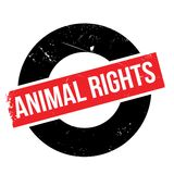 Animal Rights rubber stamp Stock Images