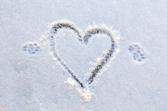 Animal`s foot prints and heart shape on a first snow. Close view of animal`s foot prints and heart shape on a first snow Royalty Free Stock Photos