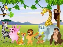 Animal safari Stock Photos