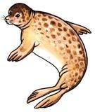 Animal salvaje del sello stock de ilustración