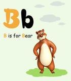 Animal sauvage d'ours avec l'alphabet Photo libre de droits