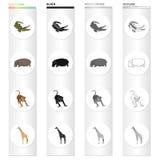 Animal sauvage, reptile de crocodile, hippopotame, singe, girafe grande Genre différent d'icônes réglées de collection d'animal d illustration stock
