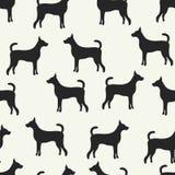 Animal seamless pattern of dog silhouettes Stock Image