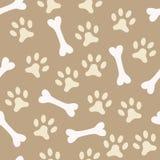 Animal seamless  pattern of paw footprint and bone Stock Image