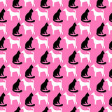 Animal seamless vector pattern of cat and dog Stock Images