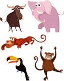 Animal set. Illustration of a cute animal set Royalty Free Stock Photo