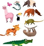 Animal set Stock Photography