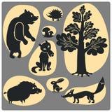Animal set. Stock Image