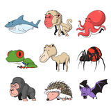 Animal set 6. Funny Animal Vector illustration Icon Set Royalty Free Stock Images