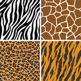 Animal Set - Giraffe, Leopard, Tiger, Zebra Seamless Pattern Stock Photo