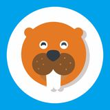 Animal set. Icon set design for dynamic web display Stock Photo