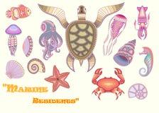 Animal Set of `marine life` Royalty Free Stock Photography