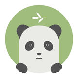 Animal set. Portrait in flat graphics - Panda Royalty Free Stock Photography