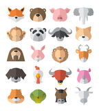 Animal set. Vector set of animals cute Stock Image