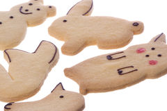 Animal Shaped Biscuits Isolated Stock Photography