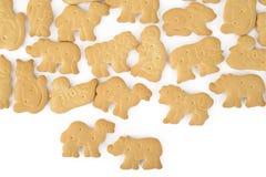 Animal shaped cracker isolated Royalty Free Stock Image