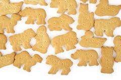 Animal shaped cracker isolated Stock Image