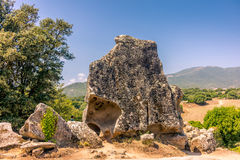 Animal shaped rock formations in Corsica - 1 Stock Images